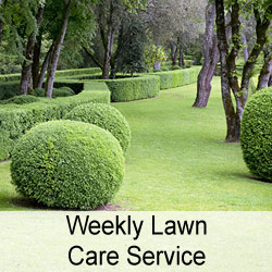 Weekly Lawn Care Service